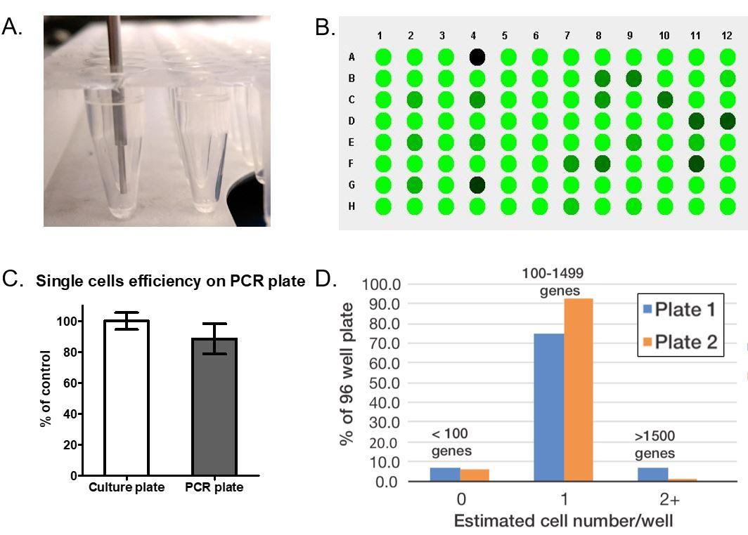 single-cell genomics